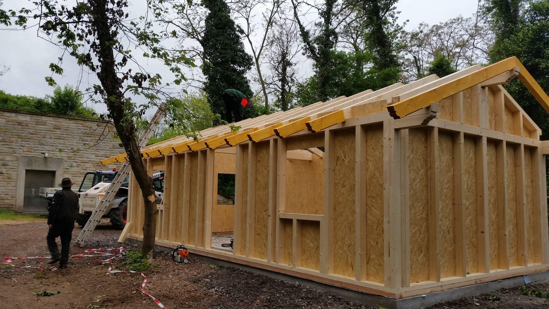Wir Bauen Eine Waldhutte